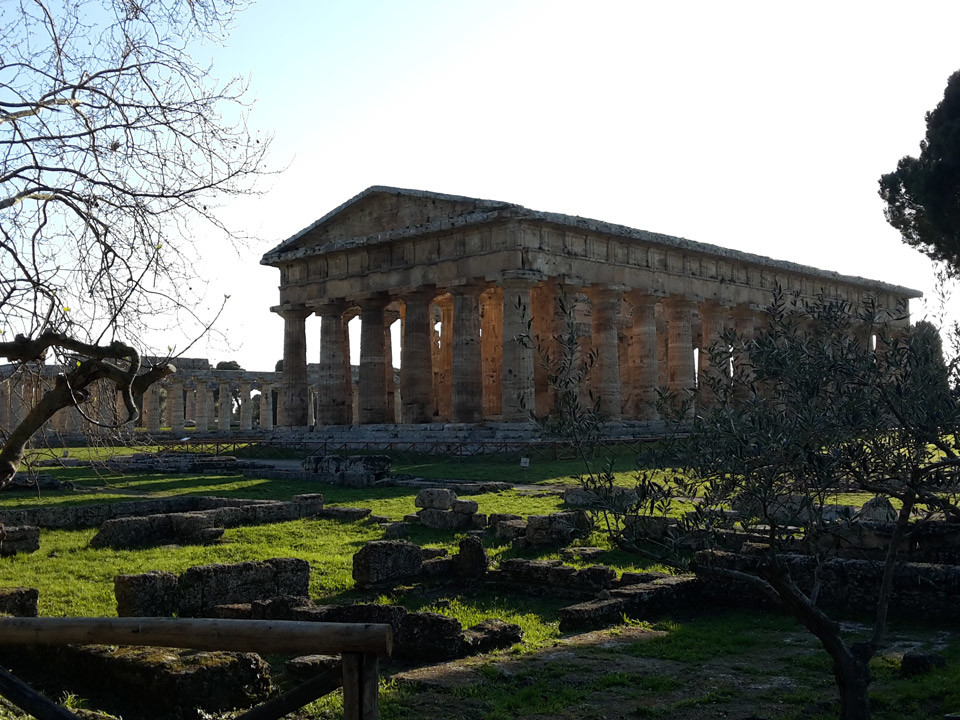 Paestum tour and buffalo mozzarella tasting - Athena temple