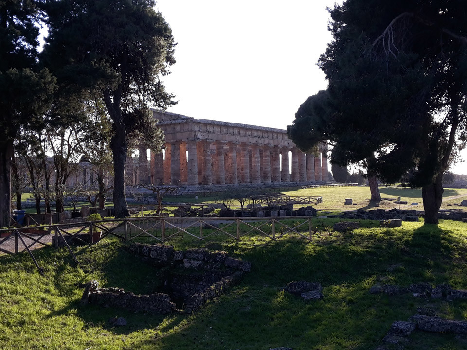 Paestum tour and buffalo mozzarella tasting - Neptune Temple