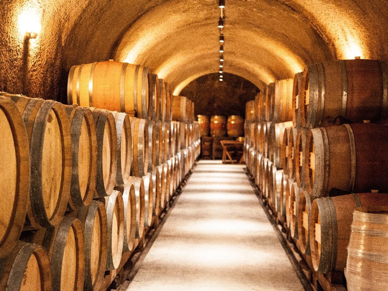 Wine tasting tour Amalfi coast - The cellar with wooden barrels